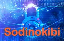 Rançongiciel Sodinokibi décryptage et suppression